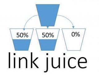 LINK JUICE- או מיץ קישורים